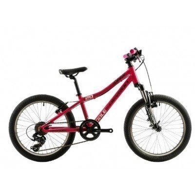 "Bicicleta copii Devron Riddle K2.2 20"" 2019"
