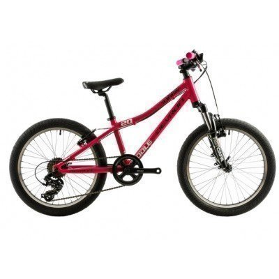 "Bicicleta copii Devron Riddle K2.2 20"" 2018"