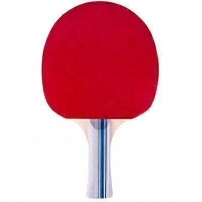 Paleta tenis masa inSPORTline Ratai S1