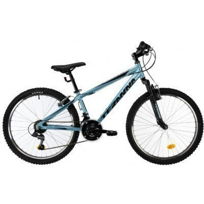 Bicicleta copii DHS Terrana 2423 2019