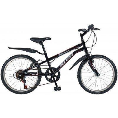 "Bicicleta copii Rich R2033A 20"""