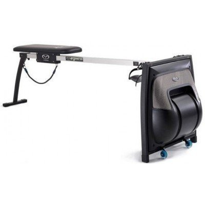 Simulator inot Vasa Swimming Ergometer SwimErg