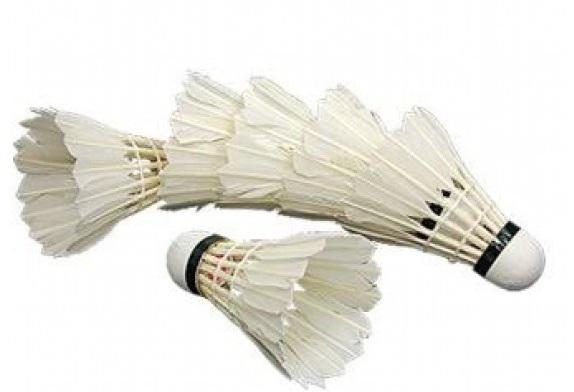 Set fluturasi Badminton Amusi